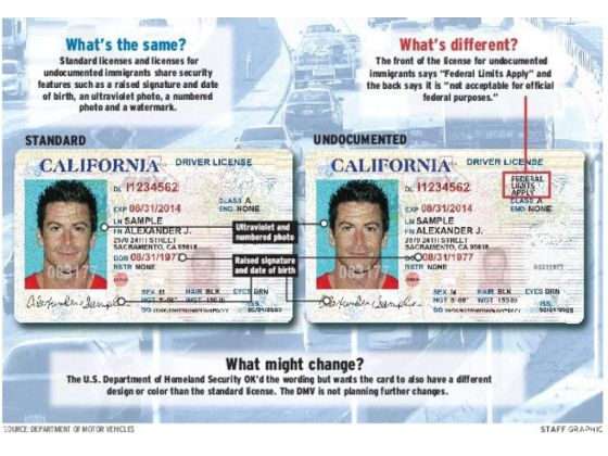 """ab 60 driver license: privileging undocumented residents or """"badge"""